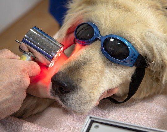 Laser thérapeutique